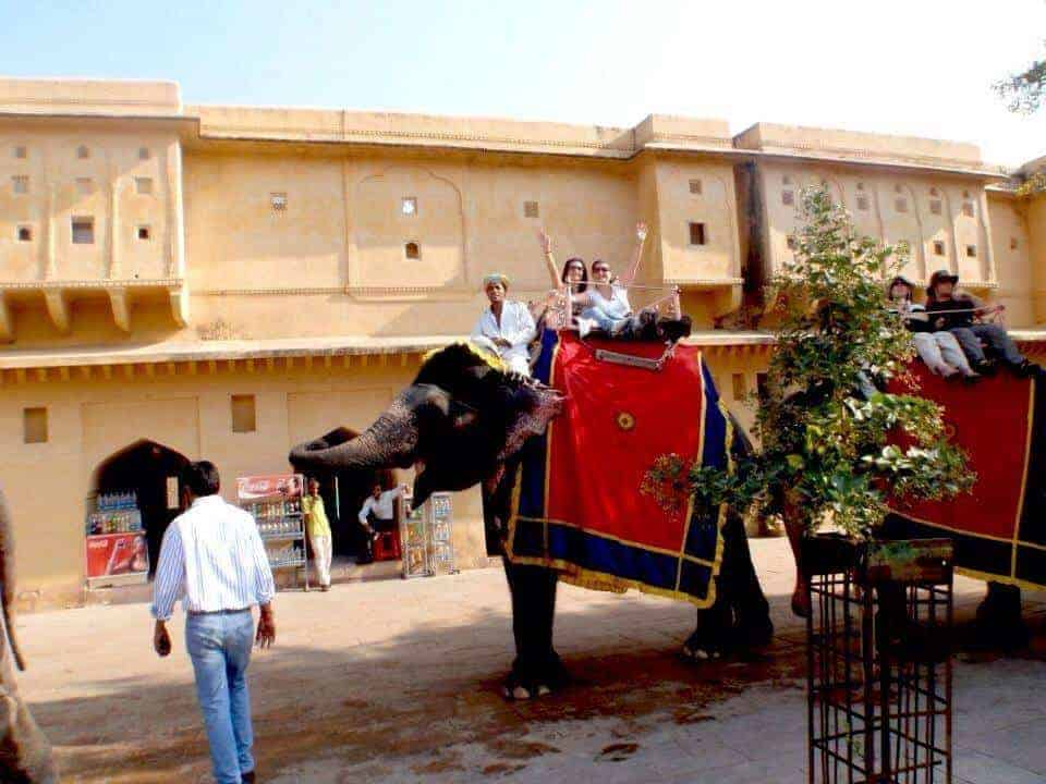 Elephants with Amber Fort and girls having fun