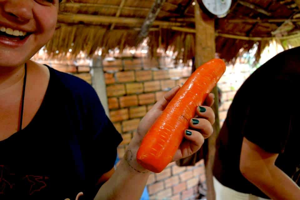 A woman is holding a big carrot