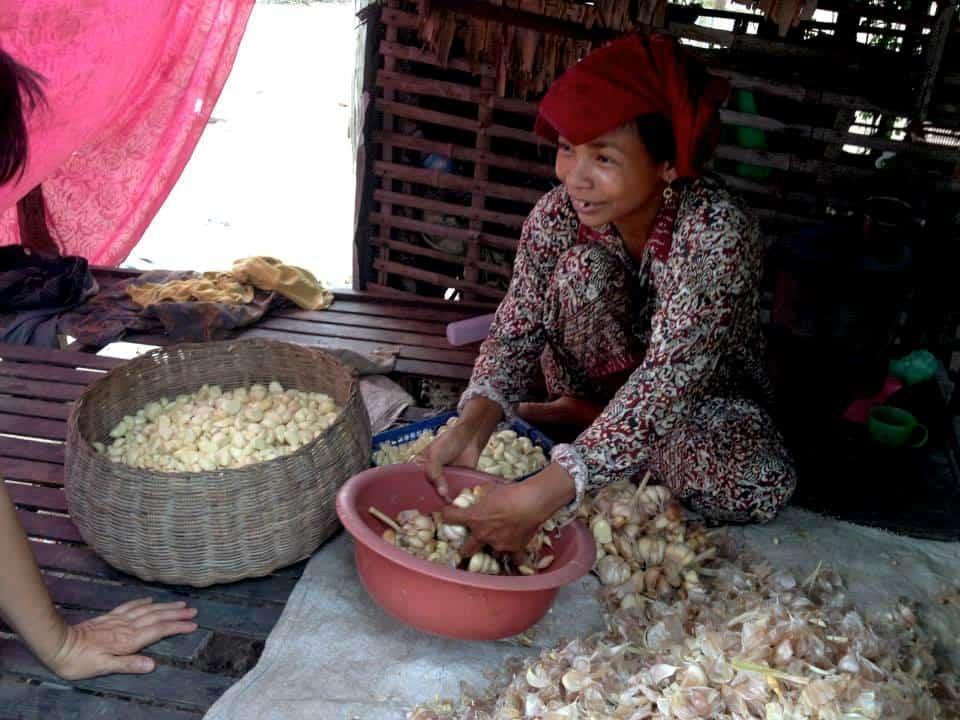 Καθάρισμα σκόρδων απο γυναίκα του χωριου #εθελοντισμόςκαμπότζη #εθελοντισμόςασία maninio.com