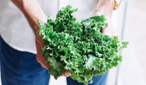 A man is holding a bunch of Kale